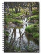 Quiet Stream Spiral Notebook