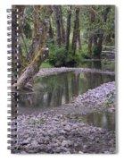Quinault Rain Forest 3147 Spiral Notebook