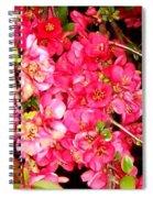 Quince Spiral Notebook