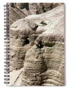 Qumran: Dead Seal Scrolls Spiral Notebook