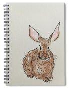 Rabbit 4 Spiral Notebook