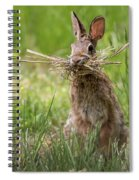 Rabbit Collector Square Spiral Notebook