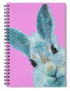 Rabbit Eyes Spiral Notebook