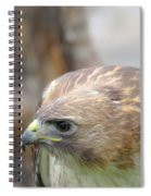 Rabbit Hunting Spiral Notebook