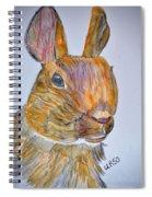 Rabbit Watercolor 15-01 Spiral Notebook