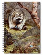 Raccoon Found Treasure  Spiral Notebook