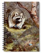 Raccoon Found Treasure  Spiral Notebook