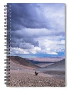 Racing With The Storm Spiral Notebook
