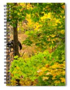 Racoon In Fall Trees Spiral Notebook