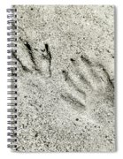 Racoon Tracks At The River Spiral Notebook