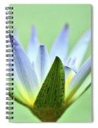 Radar Dish Spiral Notebook