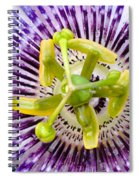 Radial Arms  Spiral Notebook