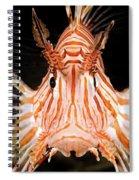 radial Lionfish Pterois radiata Spiral Notebook
