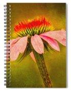 Radiance Spiral Notebook