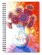 Radiant Array Spiral Notebook