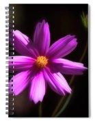 Radiant Cosmos Spiral Notebook