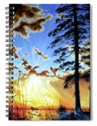 Radiant Reflection Spiral Notebook