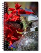 Radiant Soul Spiral Notebook