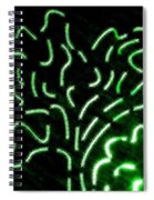 Radiant Trees Abstract  Spiral Notebook