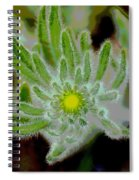 Radiate Your Inner Glow Spiral Notebook