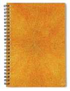 Radiation With Gold  Red And Brown  Spiral Notebook