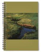 Raduga1 1908 Konstantin Andreevich 1869-1939 Somov Spiral Notebook