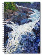 Ragging Waters Spiral Notebook