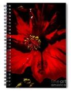 Raging Red Hibiscus Spiral Notebook