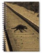 Railroad Bandit Spiral Notebook