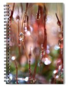 Rain Catcher Spiral Notebook