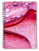 Rain Drop Jewels  Spiral Notebook
