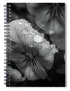 Rain Drops In The Morning Spiral Notebook