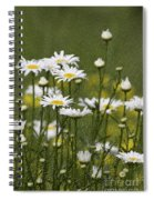 Rain Drops On Daisies Spiral Notebook