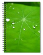 Rain Drops On Leaf Spiral Notebook