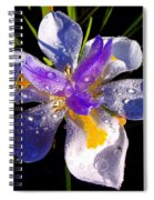 Rain Flower Morning Spiral Notebook