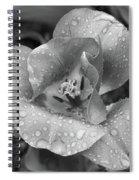 Rain Kissed Rhine Flower Spiral Notebook