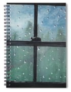 Rain On The Window Spiral Notebook