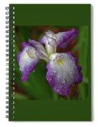 Rain-soaked Iris Spiral Notebook