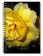 Rain Soaked Yellow Rose Spiral Notebook