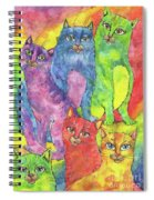 Rainbow Cats 2017 07 01 Spiral Notebook
