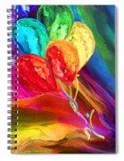 Rainbow Chaser Spiral Notebook