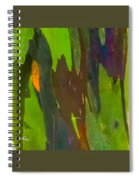Rainbow Eucalyptus 6 Spiral Notebook