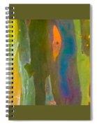 Rainbow Eucalyptus 9 Spiral Notebook