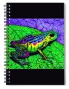 Rainbow Frog 2 Spiral Notebook