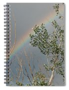 Rainbow In The Trees Spiral Notebook