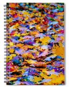 Rainbow Leaves Spiral Notebook