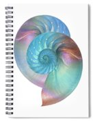 Rainbow Nautilus Pair On White Spiral Notebook