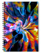 Rainbow Nebula Spiral Notebook