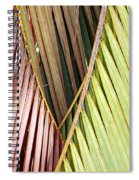 Rainbow Of Palms Gp Spiral Notebook