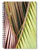 Rainbow Of Palms Gp Spiral Notebook